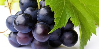 19730-grapes-800-photography-wallpaper