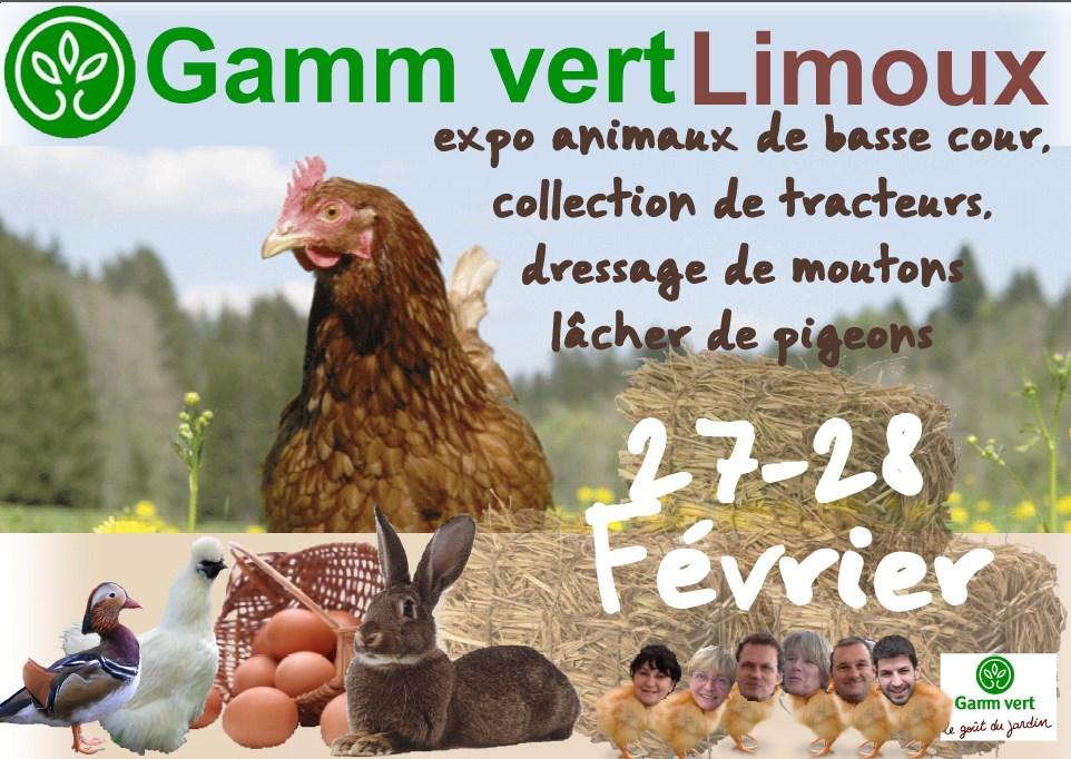 Expo Animaux De Basse Cour A Gamm Vert Limoux Cavale Votre Cooperative A Limoux